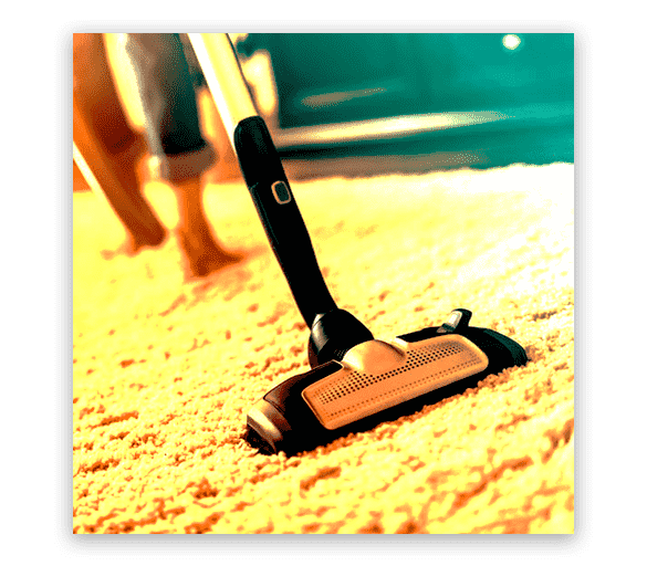 Professional Carpet Cleaning Port Kennedy